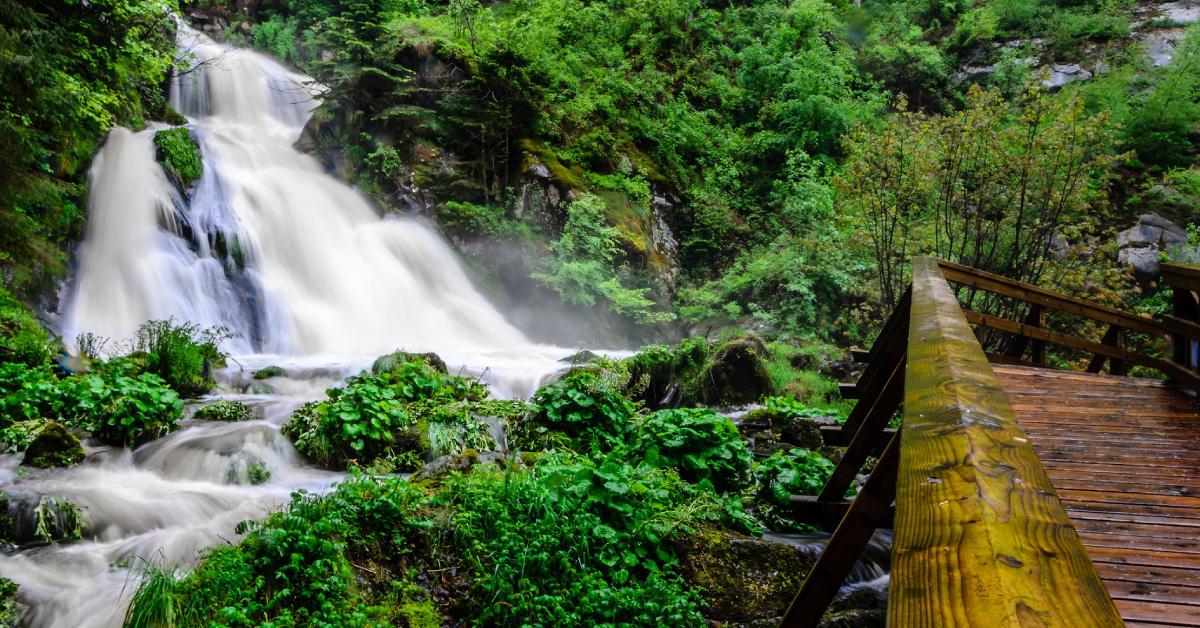 Triberger Wasserfälle Schwarzwald